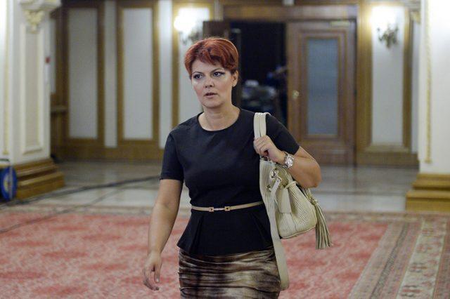 olguta vasilescu ministrul muncii psd